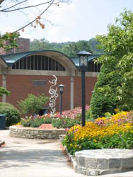 Campus view during spring